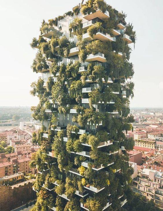Realizzazione giardini verticali a milano esterni design for Giardini verticali milano